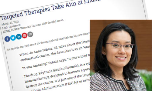 Targeted Therapies Endometrial Cancer